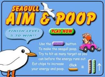 seagull-aim-poop