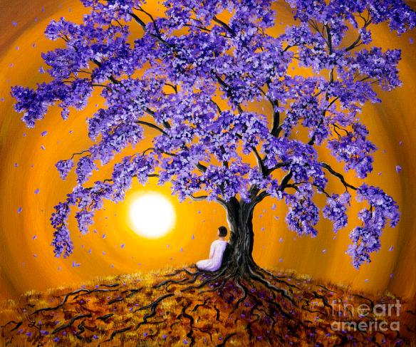 jacaranda-sunset-meditation-laura-iverson