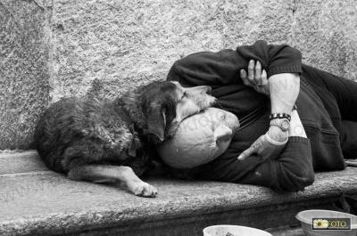 11. Homeless