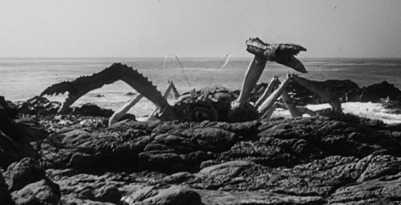 attack-of-the-crab-monster-giant-crab-beach