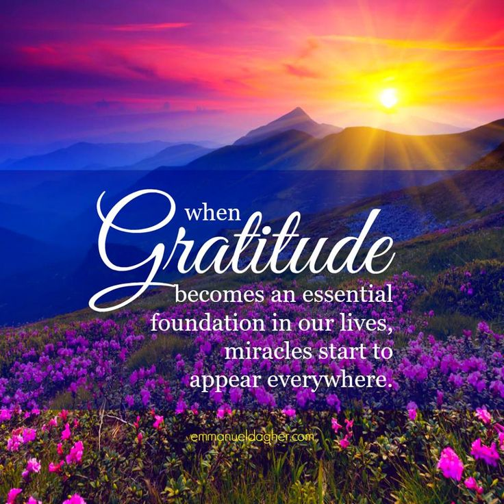 gratitude-becomes-essential-foundation-daily-quotes-sayings ...