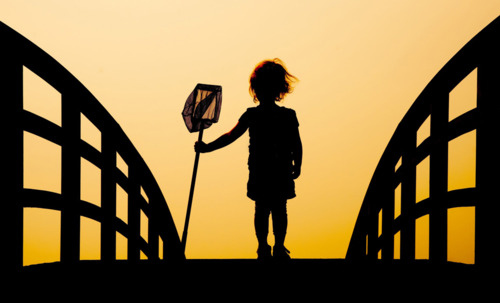 bridge-child-net-photography-pride-shadow-favim-com-100579