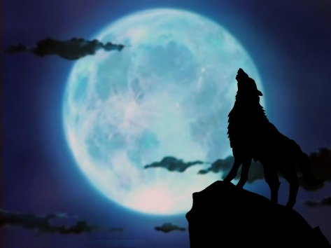 howling-wolf-wallpapers-desktop-background-For-Desktop-Wallpaper