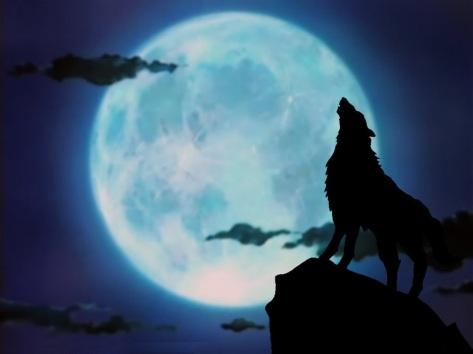 howling-wolf-wallpapers-desktop-background-For-Desktop-Wallpaper